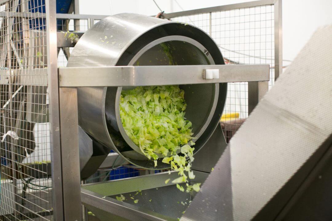 Willowbrook Foods Salad Production